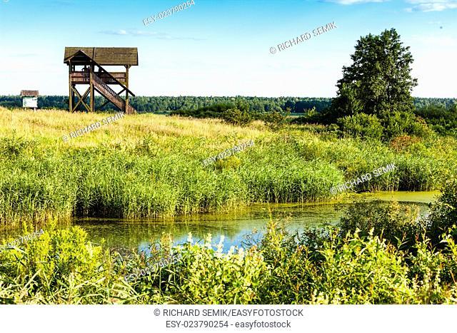 Biebrza National Park, Podlaskie Voivodeship, Poland
