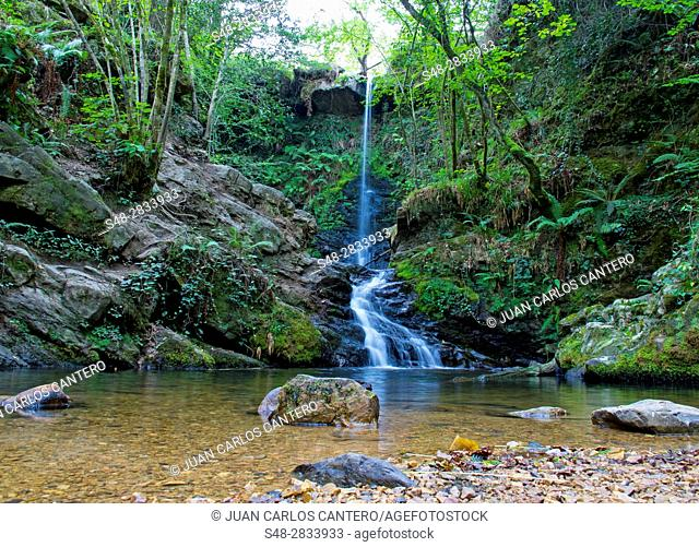 Natural Park, Saja-Nansa. Cantabria. Spain. Europe