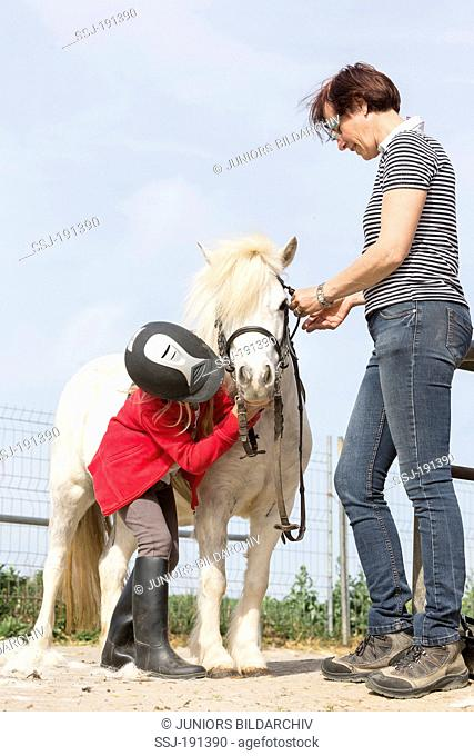 shetland pony girl and woman bridling a gray pony germany stock photo picture and rights managed image pic ssj 191390 agefotostock shetland pony girl and woman bridling