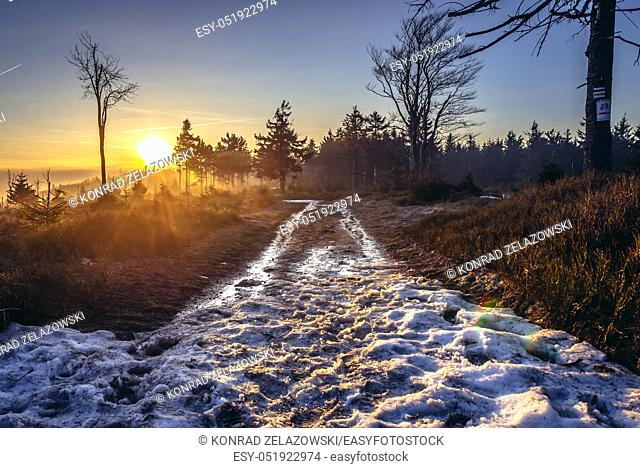 Trail on Wielka Sowa (Great Owl) mount in Landscape Park of Gory Sowie (Owl Mountains range) in Central Sudetes, Poland
