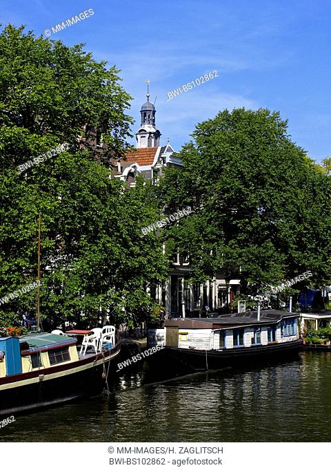 canal in Amsterdam with trees and houseboats, Netherlands, Amsterdam