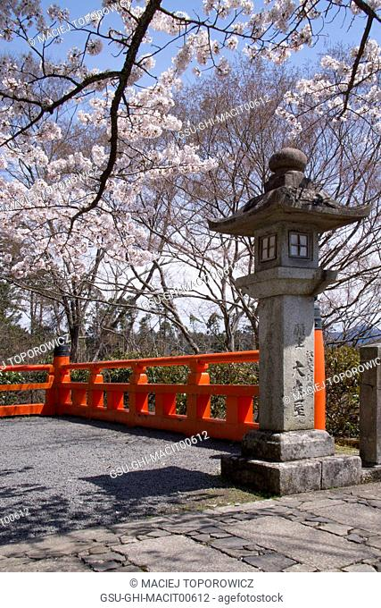 Cherry Blossoms and Carved Stone Lamppost, Kyoto, Japan
