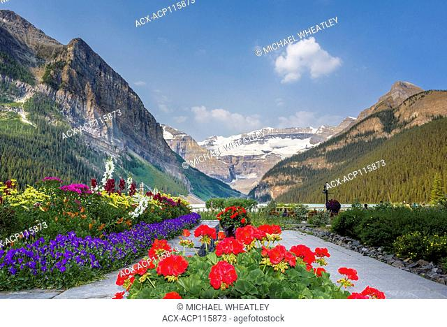 Garden flowers, Lake Louise, Banff National Park, Alberta, Canada