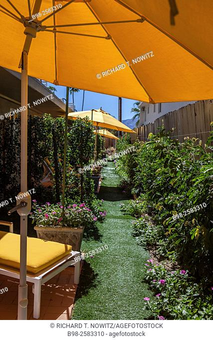 Yellow umbrellas and garden path at Colt's Lodge, Palm Springs