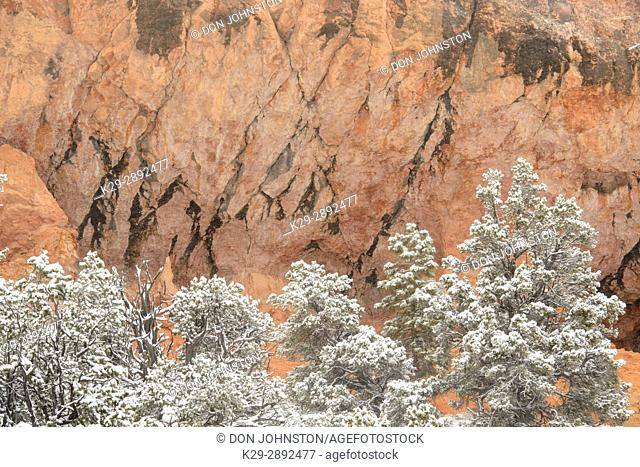 Fresh snow and rocks, Dixie National Forest, Red Canyon, Utah, USA