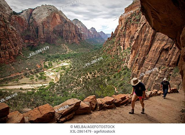 Hiking trail stairway in Zion National Park Utah. United States