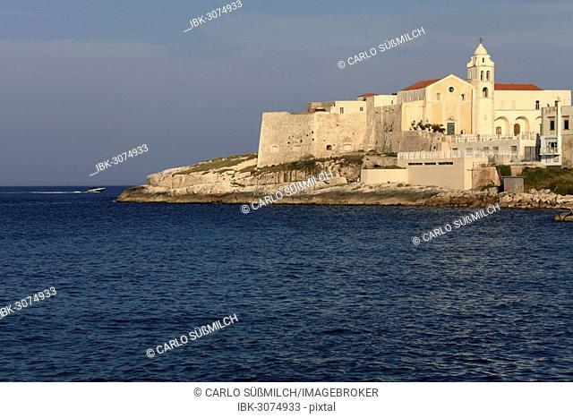 View of Vieste, Gargano, Apulia, Italy