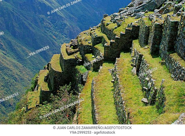 Andenes, agricultural fields, Machu Picchu, Los Andes and Urubamba or Vilcanota river canyon, Llaqtapata inca city, World Heritage, XVth century