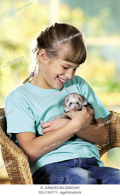 girl holding domestic polecat on arms / Mustela putorius f  furo