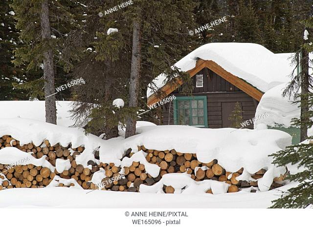 Cabin in the Rocky Mountains covered in snow with stakes of firewood. Along the shores of Lake O`Hara, Yoho National Park, British Columbia, Canada