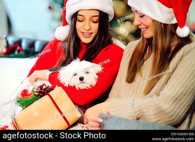 Two girls with a small dog are sitting on the couch on New Year's Eve. Friends together