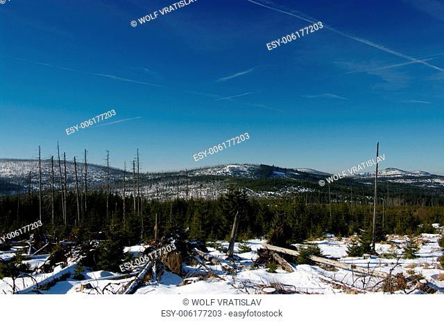 On the Top of Cerna Hora Mountain, Sumava National Park, the Southern Bohemia, Czech Republic