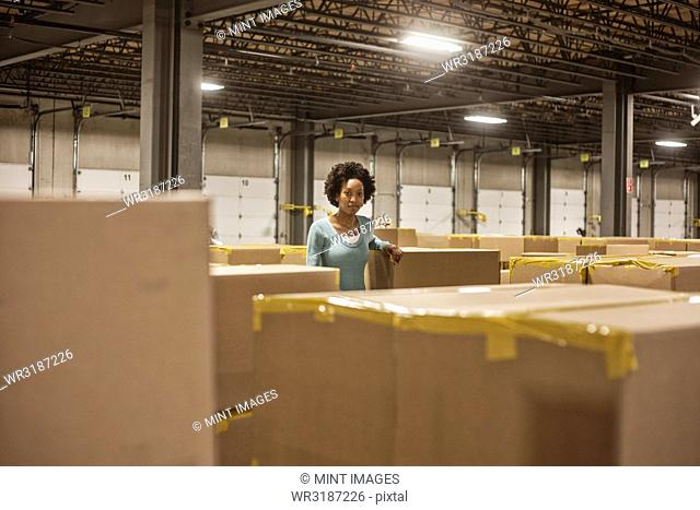 Portrait of an African American female warehouse worker in a large distribution warehouse with products stored in cardboard boxes