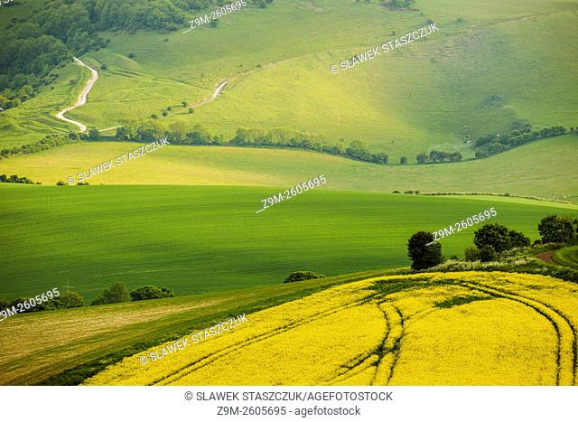 Spring afternoon in South Downs National Park near Lewes, East Sussex, England