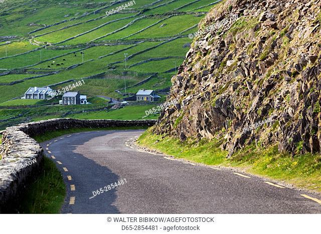 Ireland, County Kerry, Dingle Peninsula, Slea Head Drive, Dunquin, country road