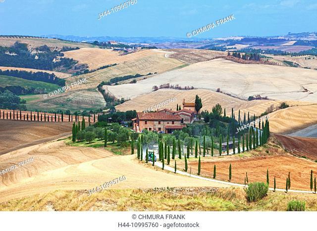 Italy Tuscany Le Crete - Farmhouse and Cypress Trees