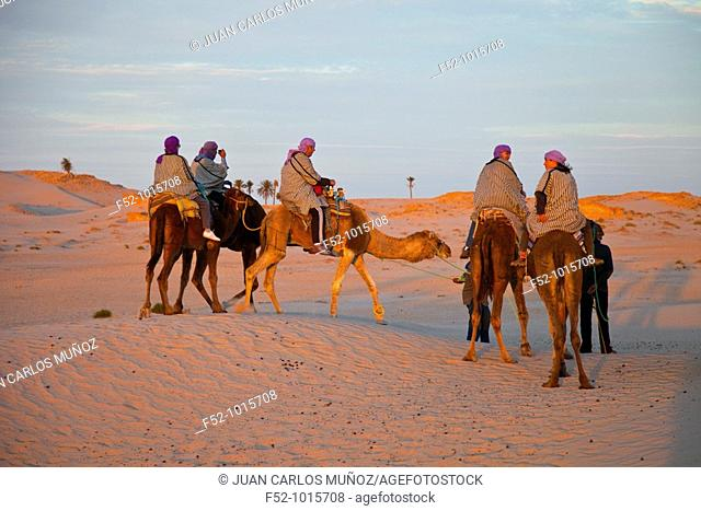 Douz Desert Landscape. Desert of Southern Tunisia. Tunez. Africa