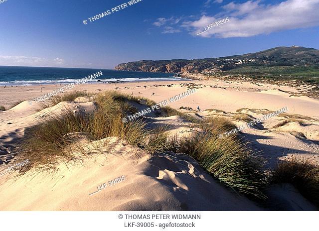 Sand dune, Praia de Guincho, Cabo da Roca, Portugal