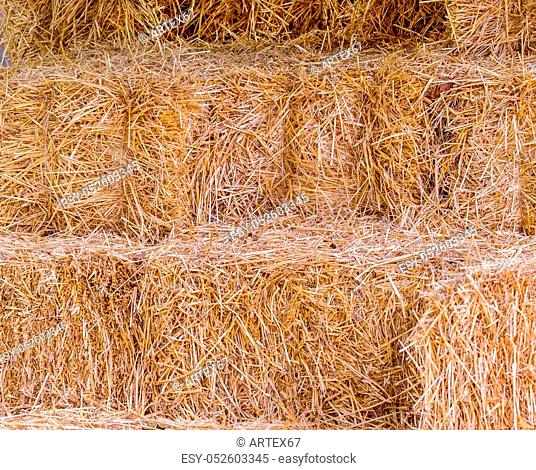 image of a natural background of bales of yellow straw