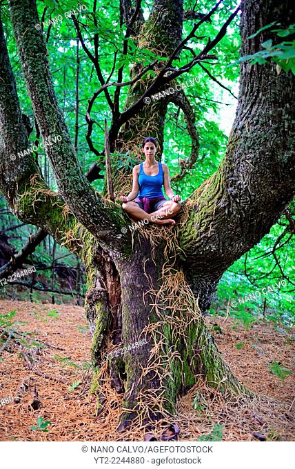 Young woman meditates on big chestnut tree