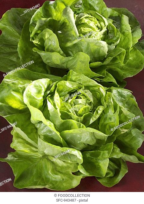 Two lettuces