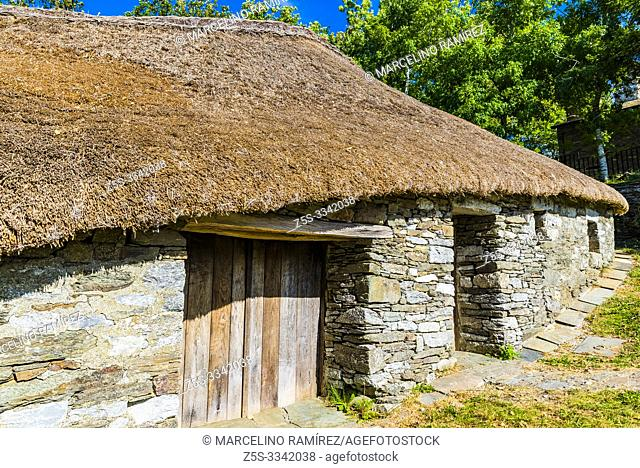 Palloza, traditional thatched roof house in O Cebreiro. Pedrafita do Cebreiro, Lugo, Galicia, Spain, Europe