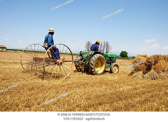 Antique reaping machine on a field of wheat  La Fuliola  LLeida  Spain