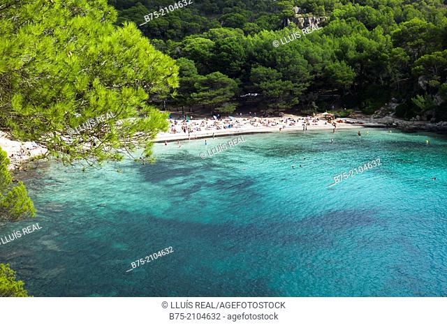 Mediterranean coast. Unspoiled beach with pines, turquoise waters, swimmers and people on the beach. Macarella, South Coast, Menorca, Balearic Islands, Spain
