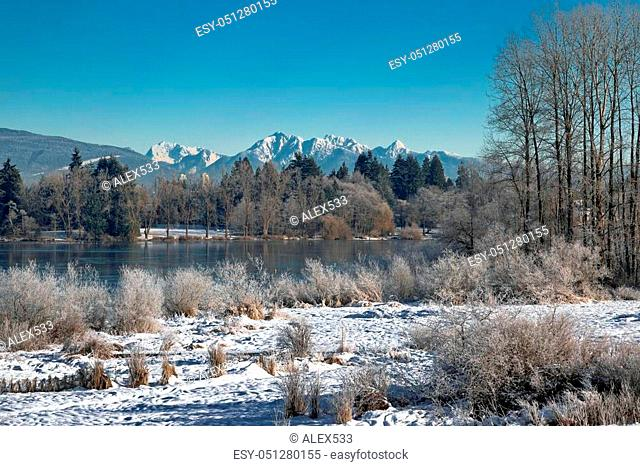 Winter landscape on the Deer Lake, snow-covered trees and shrubs on the lake shore against a beautiful blue sky