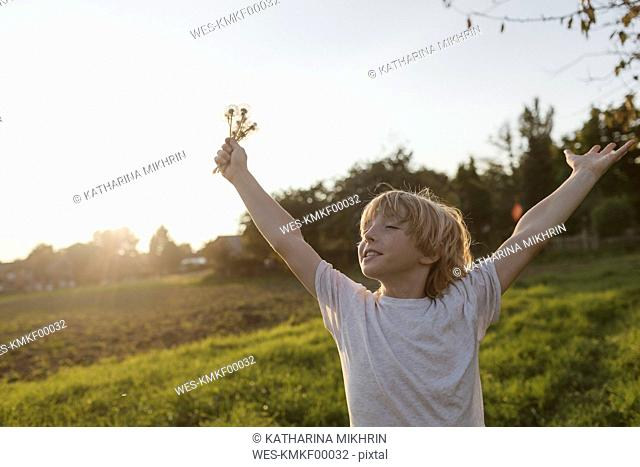 Carefree boy on the countryside in sunlight