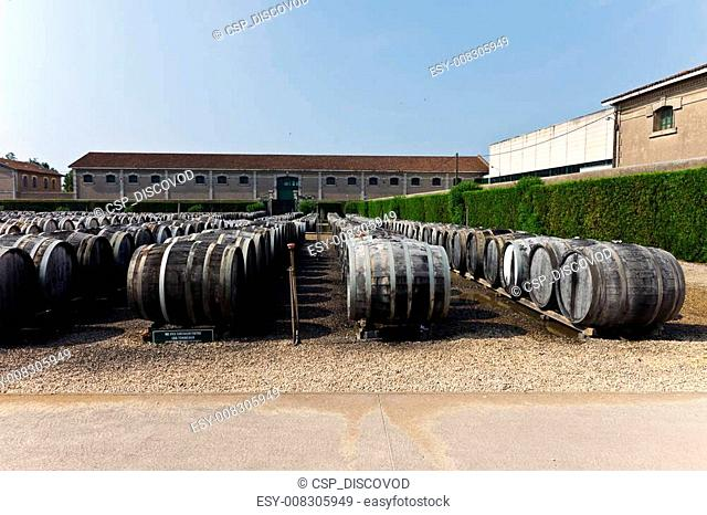 wine barrels with vermuth