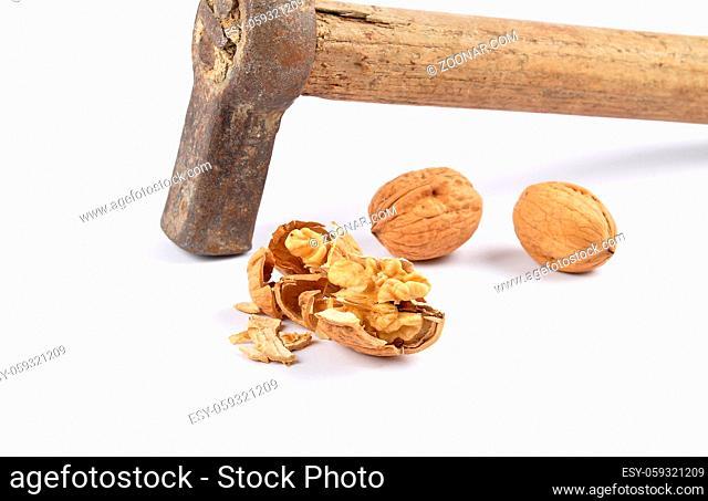 Walnüsse und Hammer auf weiss - Walnuts and hammer on white