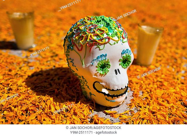 A decorated scull is placed at the altar of the dead (altar de muertos), a religious site honoring the deceased, during the Day of the Dead festival in Morelia