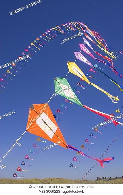 Kites, Sand & Sawdust Festival, Ocean Shores, Washington