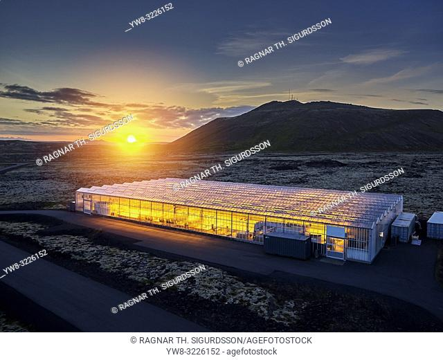 Greenhouse, Reykjanes Peninsula, Iceland