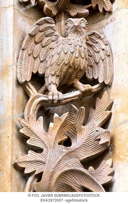 Detalle de la Puerta de Ramos en la fachada de la Catedral Nueva. Relieves incluidos en la restauración de 1992. Lechuza. Salamanca. Castilla-León