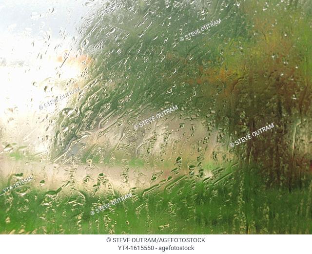 Rain on a window, with a Tree outside