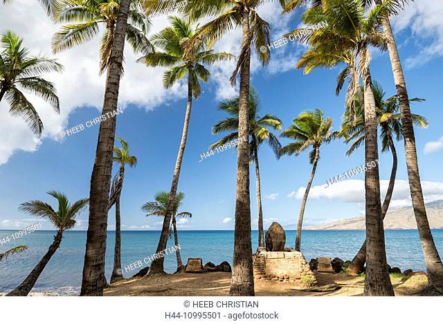 USA, Vereinigte Staaten, Amerika, Hawaii, Maui, Kihei, beach