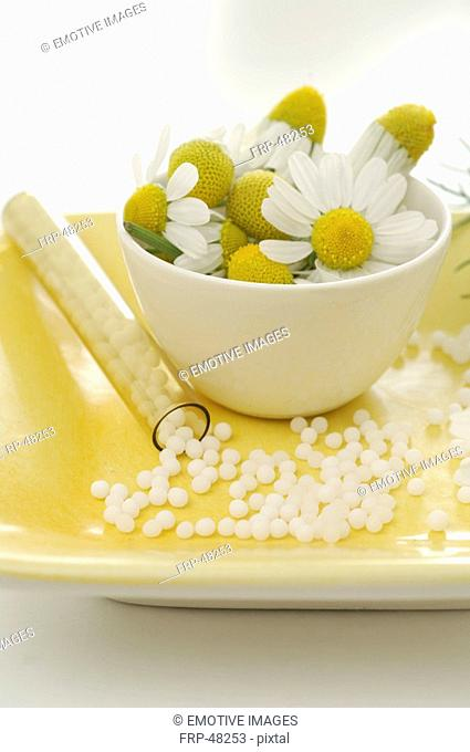 Camomile blossoms and globules