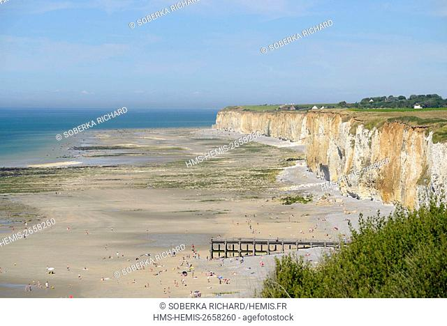 France, Seine Maritime, Veules les Roses, pebble beach and cliffs to the East