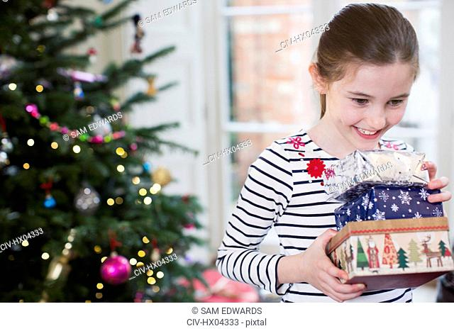 Smiling, eager girl gathering Christmas gifts in living room