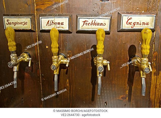 The typical wines of Romagna, wine tap handles, La Sangiovesa restaurant, Sant'Arcangelo di Romagna, Emilia-Romagna, Italy