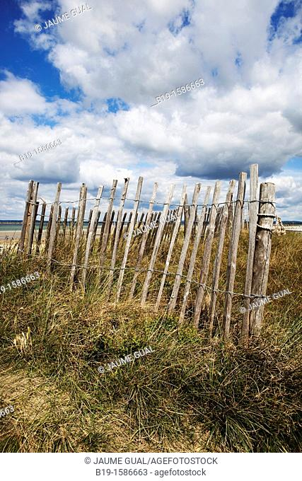 Fence on the East Head dunes, West Wittering beach, Backlesham Bay, England, United Kingdom, Europe