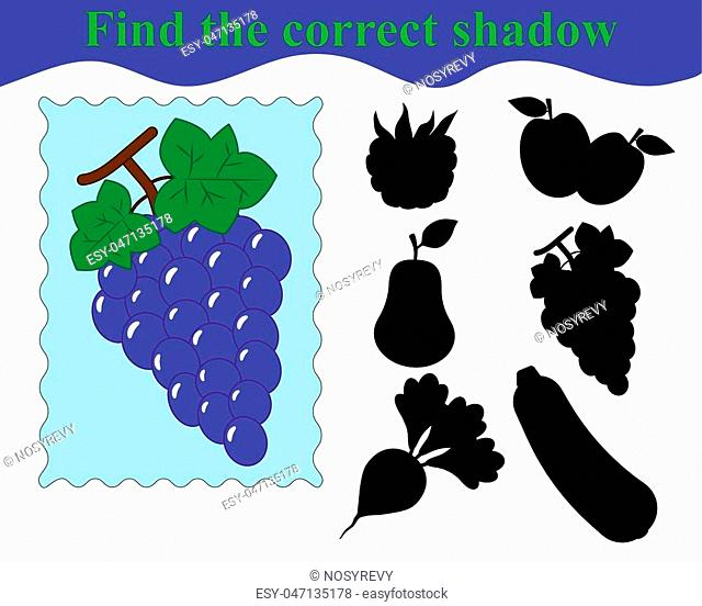 Find the correct shadow, educational game for kids. Bunch of grapes (fruit). Vector illustration