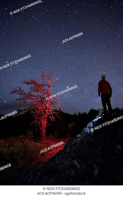 A lone figure at night on the summit of Pincushion mountain with a red light painted tree, British Columbia, Canada