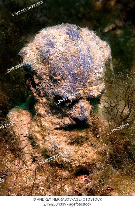 "Underwater museum """"Reddening leaders"""", Lev Nikolayevich Tolstoy sculpture. Cape Tarhankut, Tarhan Qut, Black sea, Crimea, Ukraine, Eastern Europe"