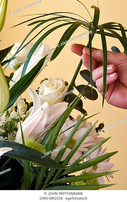 ADDING A CYPERUS INVOLUCRATUS UMBRELLA PLANT TO A CUT FLOWER BOUQUET