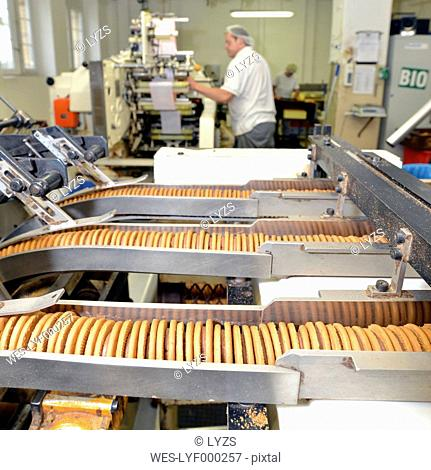 Germany, Saxony-Anhalt, production lines with cookies in a baking factory