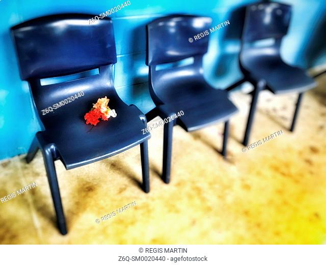 flowers abandoned on a chair