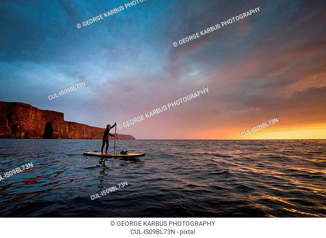 Paddle boarder on water at sunset, Cliffs of Moher, Doolin, Clare, Ireland